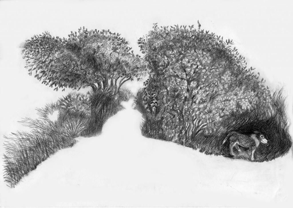 Caminho Coração. Drawing. Ursula May. 2010.